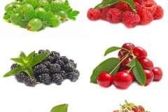 Вкусные рецепты: Цветная капуста фаршированная, Латкес творожный на Хануку, Подсолнечный салат